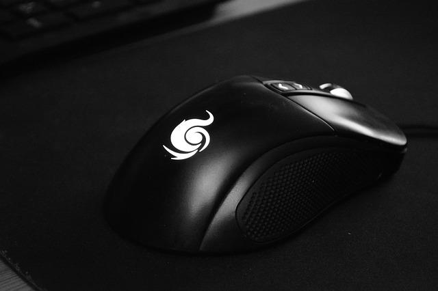 černá myš